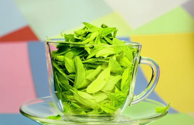 bạn đã biết cách làm đẹp với trà xanh