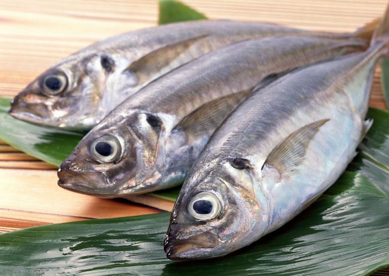 Cách giữ cho cá tươi lâu không cần tủ lạnh 1