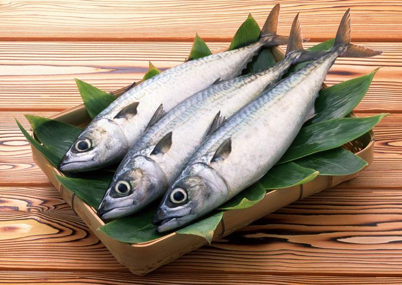 Cách giữ cho cá tươi lâu không cần tủ lạnh 3