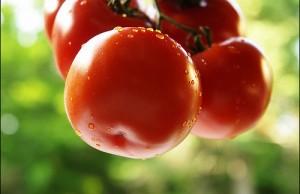 Bạn đã biết hết công dụng làm đẹp từ cà chua chưa