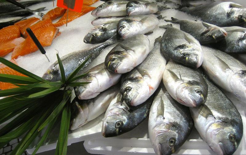 Giúp chị em nội trợ chọn mua được cá tươi ngon 5
