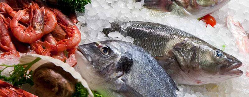 Giúp chị em nội trợ chọn mua được cá tươi ngon 6
