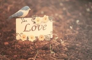 sự thật trần trụi về tình yêu mà người phụ nữ phải nhớ