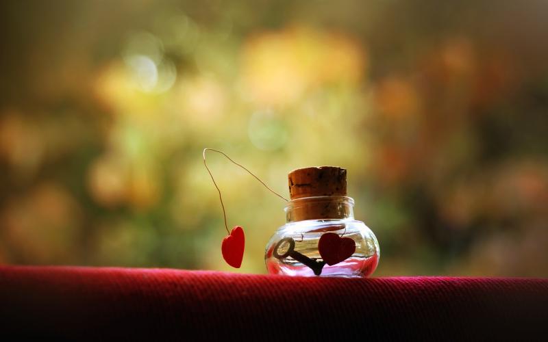 vì tình yêu mà từ bỏ thì có đáng không?
