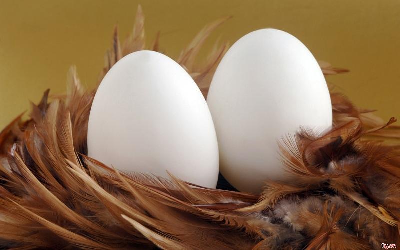 Những thực phẩm nên ăn vào buổi sáng để giảm cân nhanh 3