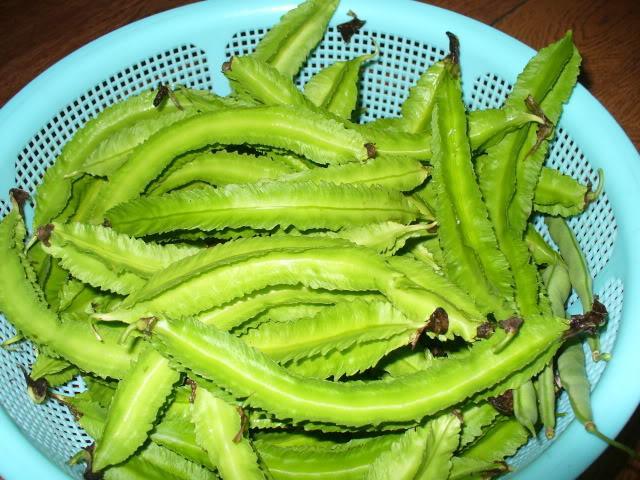 Hạt đậu rồng có thể giúp bạn điều trị bệnh đau dạ dày
