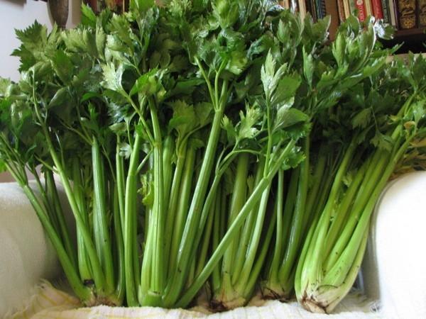 Top 5 thực phẩm đẩy lùi mỡ thừa thanh lọc độc tố được nhiều nghệ sỹ Việt sử dụng5