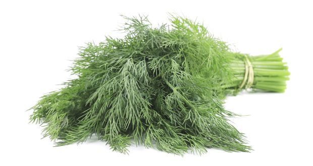 Bunch of dill.