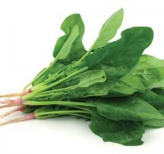 Những lợi ích tuyệt vời từ rau chân vịt bạn cần biết